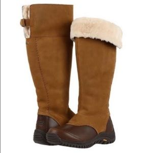 🎁New Ugg Miko chestnut/brown tall leather boots 6